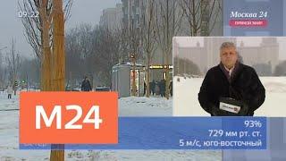 """""""Утро"""": погода приобретет оттепельный характер 30 января - Москва 24"""