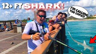 Catching MASSIVE SHARK at PUBLIC Pier!