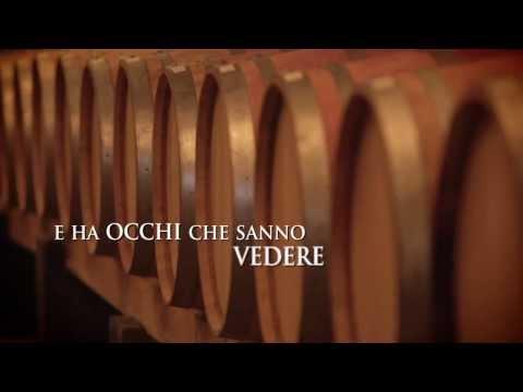 Wineverse vendita vini online | Vini italiani pregiati di vantine emergenti