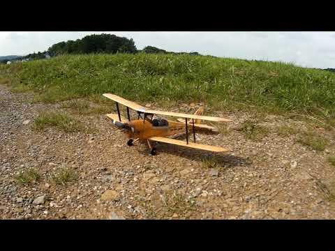 Tiger Moth von Hacker-Model