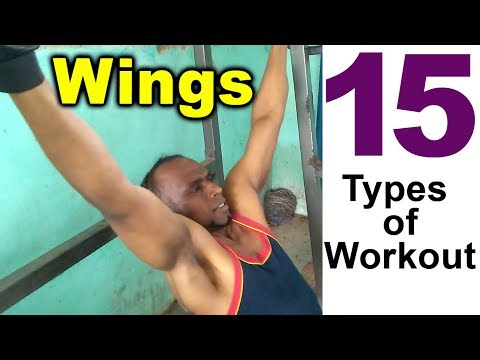 15 Types of Wings Back Workout.