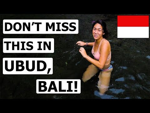 TOP 8 THINGS TO DO In UBUD, Bali! (Travel Guide)