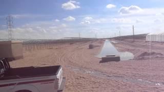 قناة السويس الجديدة : ألف صوبة زراعية فى سيناءبالقرب من القناة الجديدة