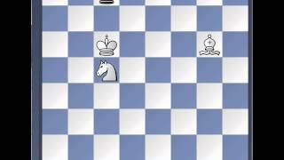 Шахматы. Мат конём и слоном
