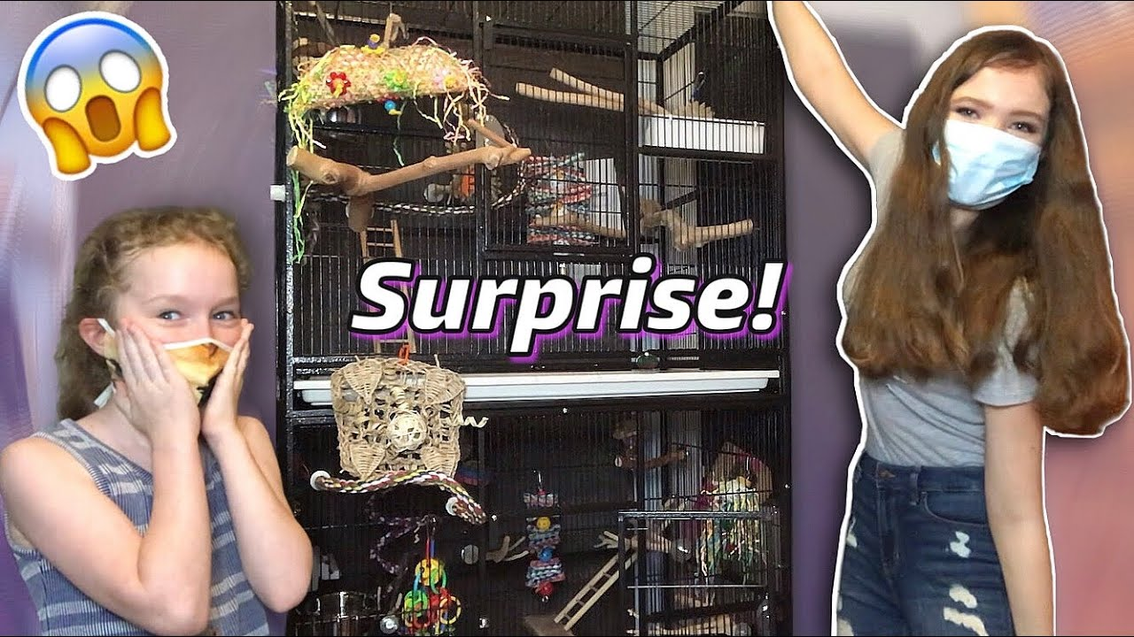 I SHOWED UP AT MY FAN'S HOUSE WITH A BRAND NEW HUGE BIRD CAGE!