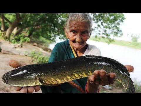 Koramenu Fish Recipe | Murrel Fish Curry By Granny Mastanamma