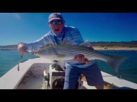 MONTAUK FLY FISHING - STRIPERS