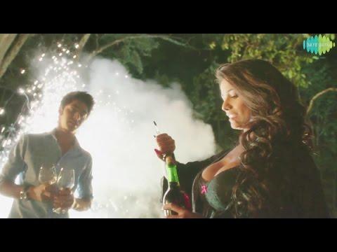Tera Nasha Full HD Video Song  | Nasha |...