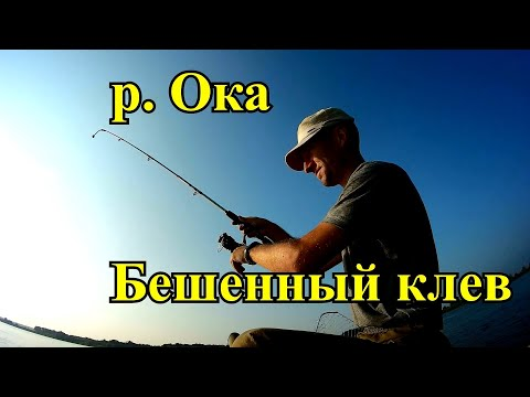Рыбалка на Оке в Муроме с лодки. Бешеный клев