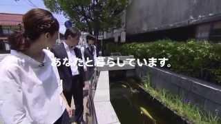 倉吉旅ブラ篇 松本若菜 検索動画 29