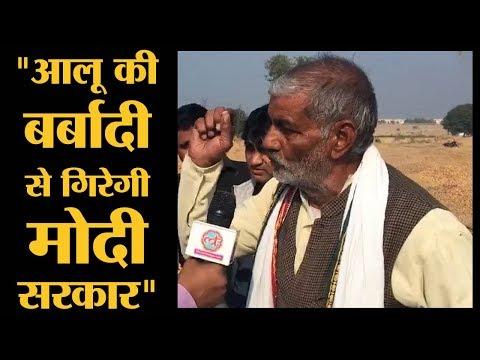 आलू की बर्बादी मोदी सरकार पर क्या असर डालेगी?   Agra   The Lallantop