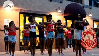The 2014 Texas State Yard Show: Delta Sigma Theta Sorority Inc.