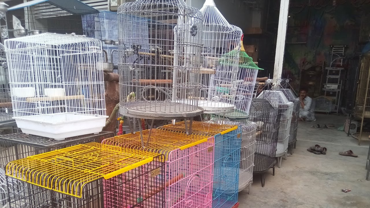 Bird Cage For Sale Parrot Cages Shop Price In Karachi Lalukhet Market Youtube