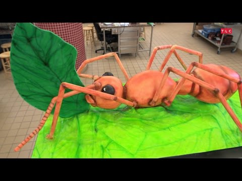 Building a Giant Ant Cake  Cake Boss
