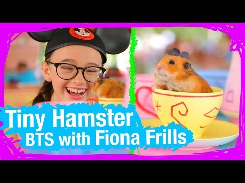 Behind the Scenes With Tiny Hamster and Fiona Frills at Walt Disney World | WDW Best Day Ever