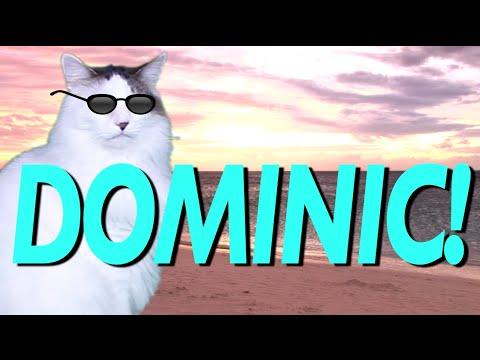 HAPPY BIRTHDAY DOMINIC! - EPIC CAT Happy Birthday Song