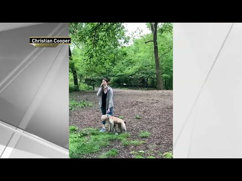 Amy Cooper, Woman In Viral Central Park Confrontation, Appears In ...