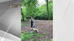 Woman Fired After Viral 'Central Park Karen' Confrontation | NBC New York