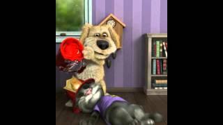 Мучения кота
