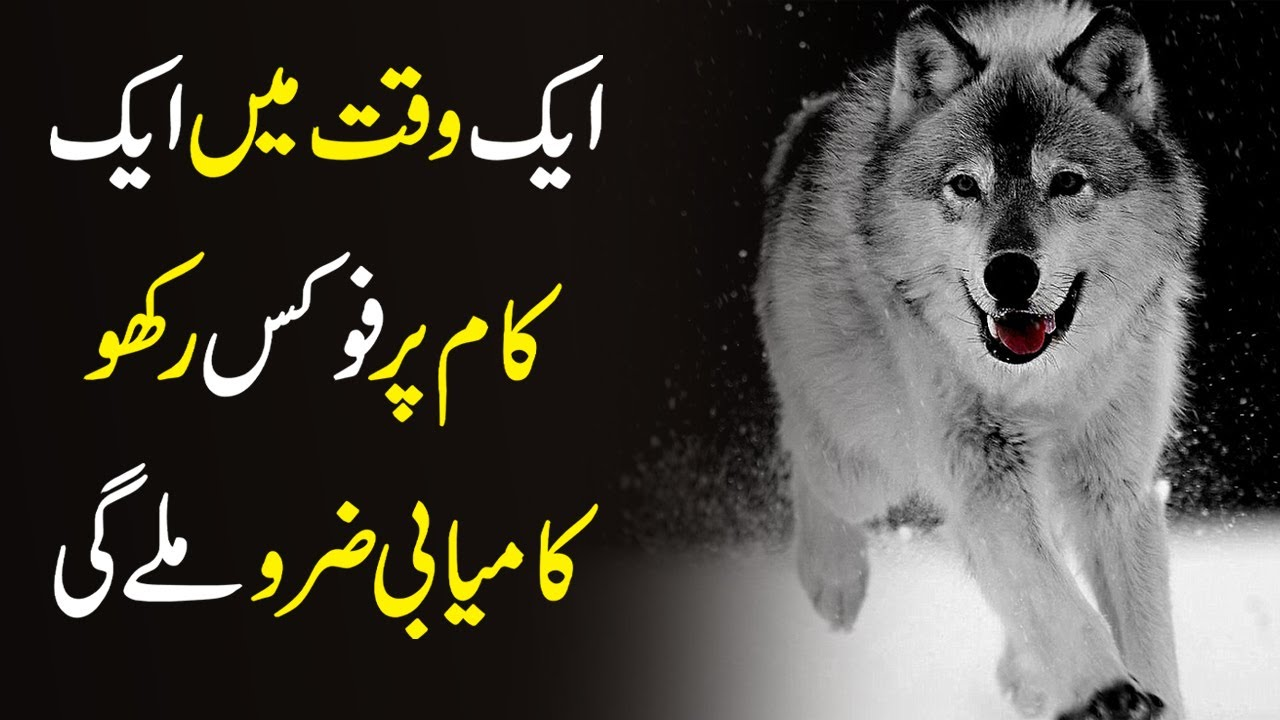 STAY FOCUSED - Motivational Video for Success Life And Study 2020 In Urdu