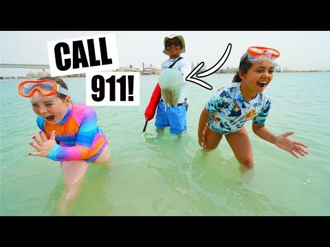 BEACH EMERGENCY!! Giant Jellyfish Call 911?