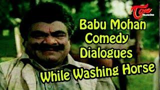 Video Vamsodharakudu Comedy Scenes    Babu Mohan Comedy Dialogues While Washing Horse download MP3, 3GP, MP4, WEBM, AVI, FLV November 2017