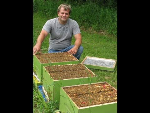 The Neonicotinoid View- Ontario Beekeepers Efforts To Ban Neonicotinoids In Canada