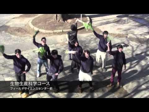 恋するフォーチュンクッキー 鳥取大学平成25年度卒業生ver.
