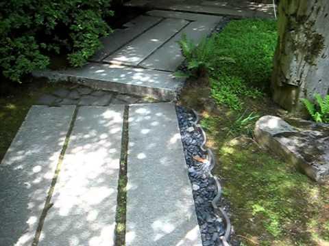 Stone Walkway Japanese Gardens Portland
