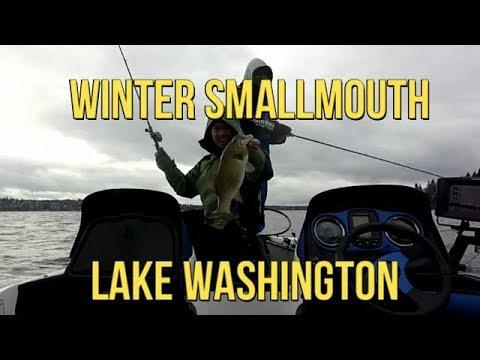 Lake Washington Smallmouth fishing 01-06-18