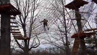 Treetop Trekking in Brampton