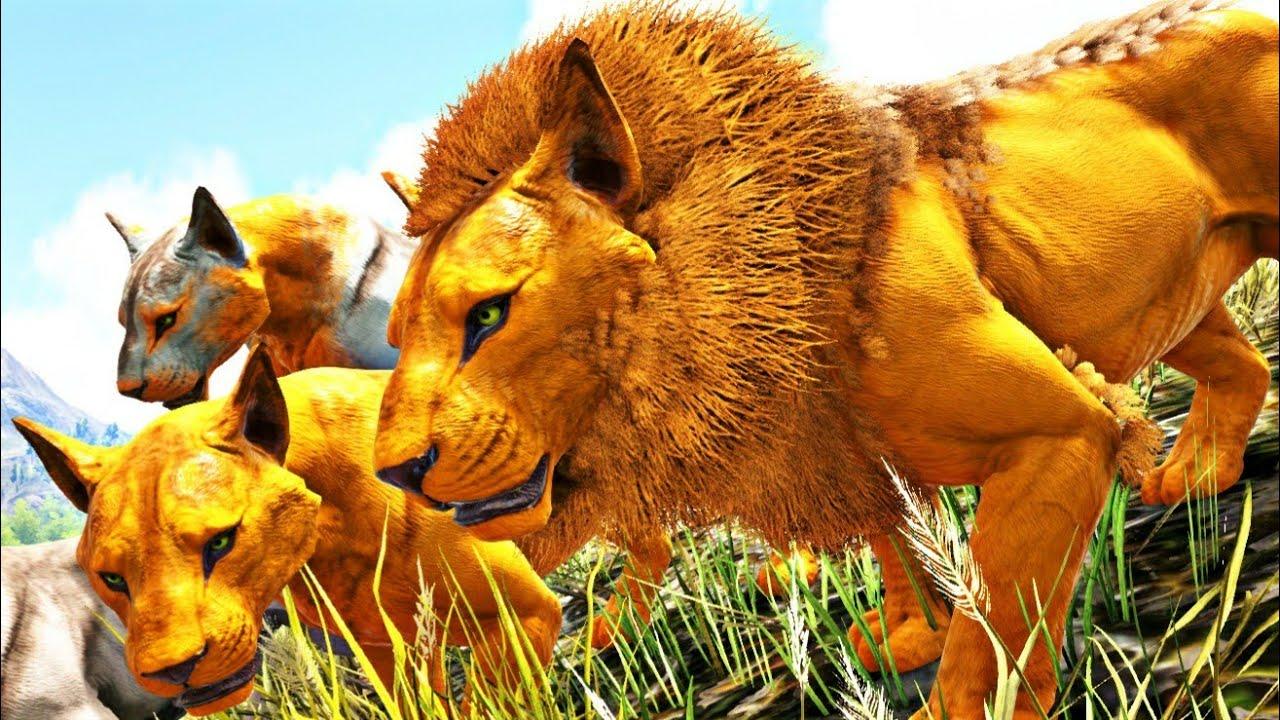 O Rei Leão Caçando Para Sua Família de 5 Leoas! Ark Survival Evolved Dinossauros (PT/BR)