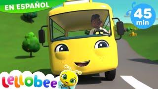 Canciones Infantiles | Las Ruedas del Autobús | Nuevo Dibujos Animados | Little Baby Bum en Español