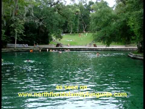 Wekiwa Springs Apopka Florida Youtube