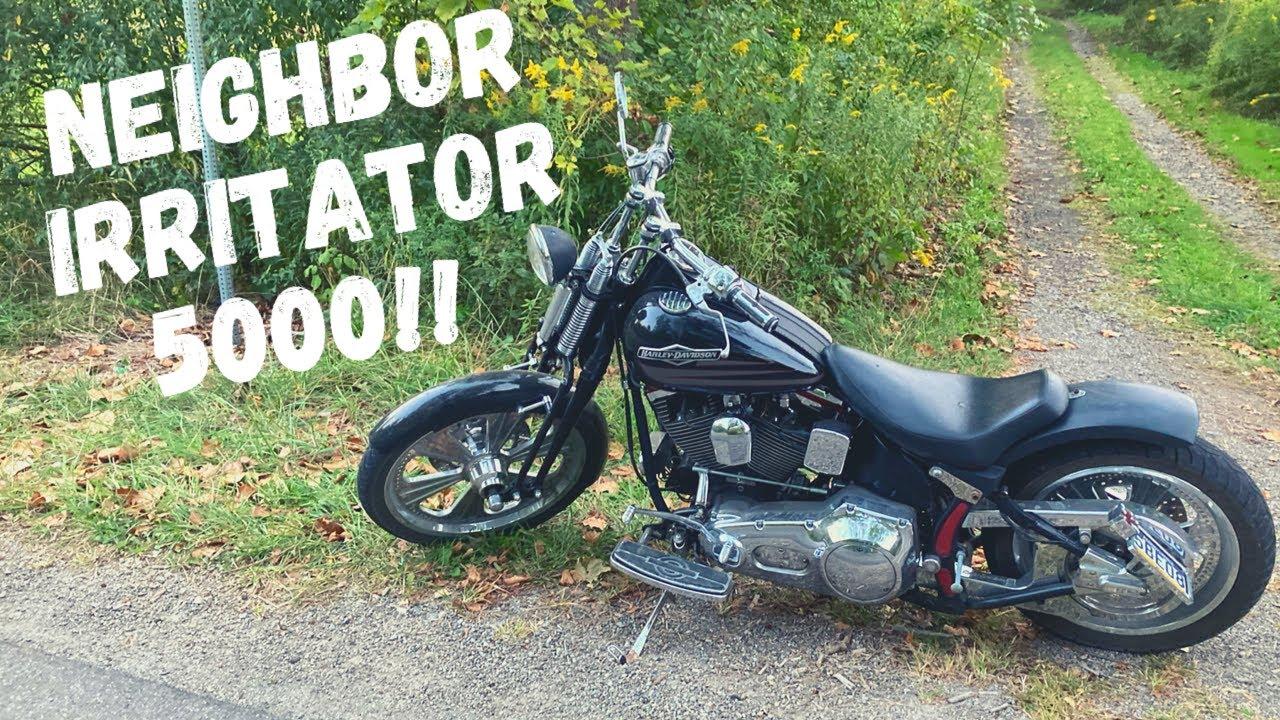 I Bought a 1997 Harley Davidson Springer Softail!