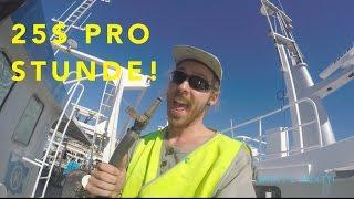 BESTER WORK AND TRAVEL JOB - ich nehme euch mit zur Arbeit l Australien Vlog#6