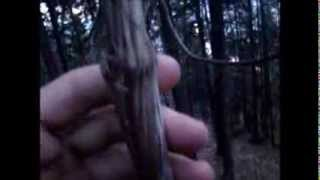 .natural Cordage. ...using A Climbing Vine For Cordage And Weaving...