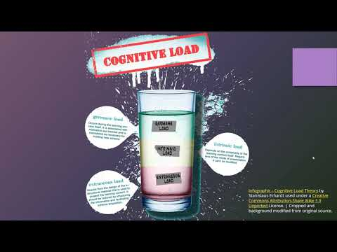 ITEC 5320: Cognitive Load Theory