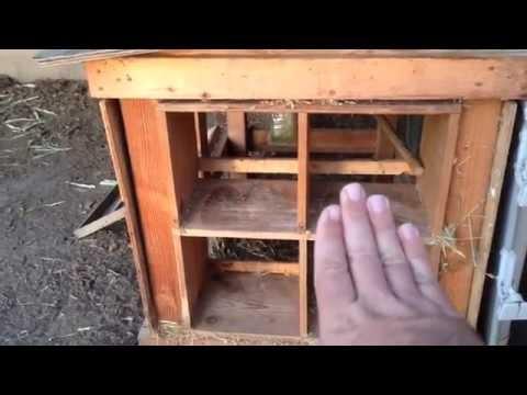 Nest box ideas!