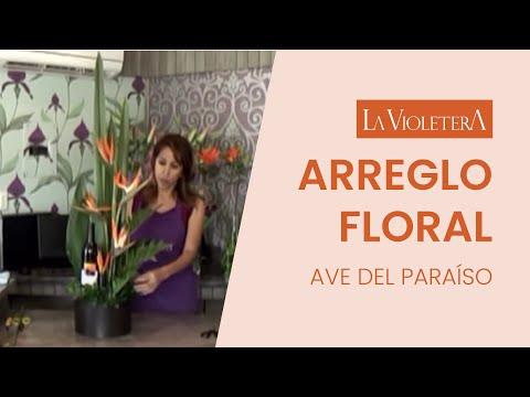 como-hacer-un-arreglo-de-flores-la-violetera-floreria-y-escuela-diseño-floral