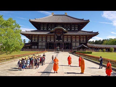 Ancient Nara, Japan In 4K Ultra HD