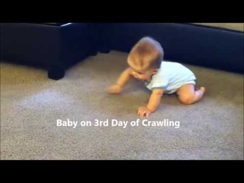 Baby on 3rd Day of Crawling