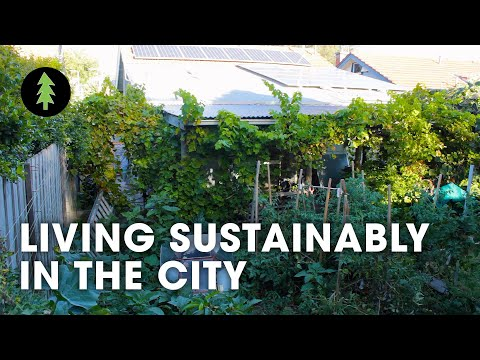 Sustainable City Living on 1/10th of an Acre – Degrowth in the Suburbs