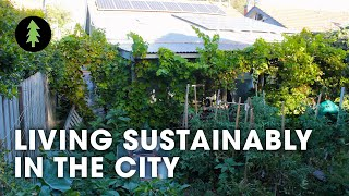 Sustainable City Living on 1/10th of an Acre | Degrowth in t...
