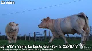 Lot 18 Vente Simon Genetic La Roche-Sur-Yon 22/11/2017