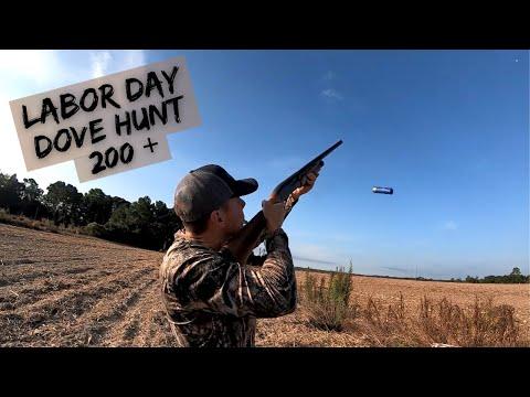 South Georgia Dove Hunt