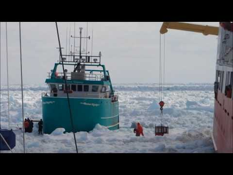 (Rare Footage) Coast Guard To The Rescue - Fishing Vessel Hull Patched In Pack Ice