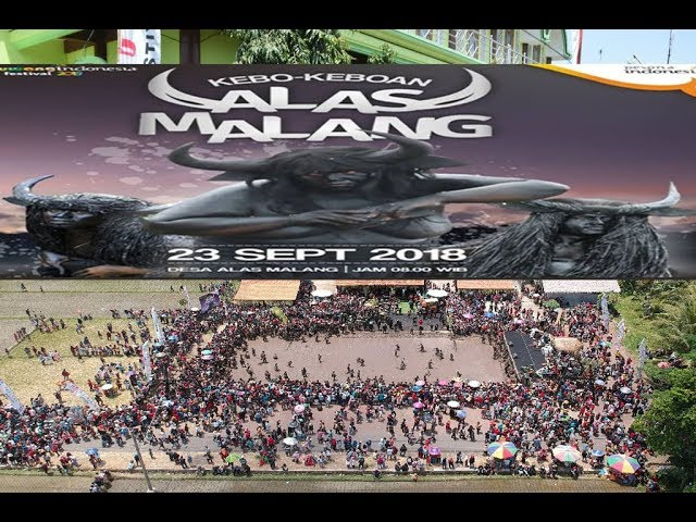 Festival Kebo Keboan Alasmalang 2018 Banyuwangi,Ritual Adat Unik Dibanjiri Penonton