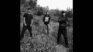 Download Chaotic Dread - Decomposed (Brutal Death Metal, India)