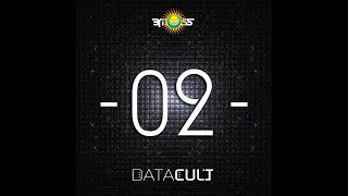 Datacult -  Shades (ManMadeMan remix)